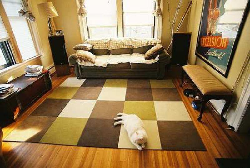Những lý do khiến việc nuôi thú cưng làm ngôi nhà của bạn bị mất giá