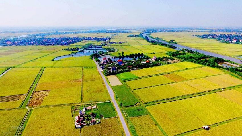 Có phải gia hạn khi hết thời hạn sử dụng đất nông nghiệp không?