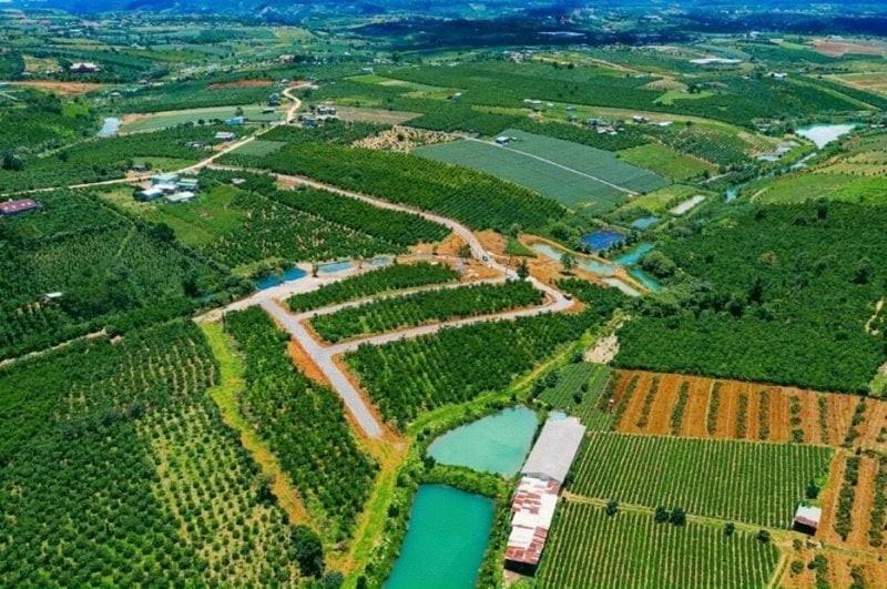 Khẩn trương rà soát 19 dự án đất nền tại Lâm Đồng