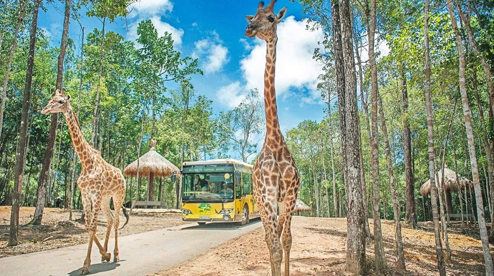 Cố gắng khởi công Vinpearl Safari Hạ Long ngay trong năm nay