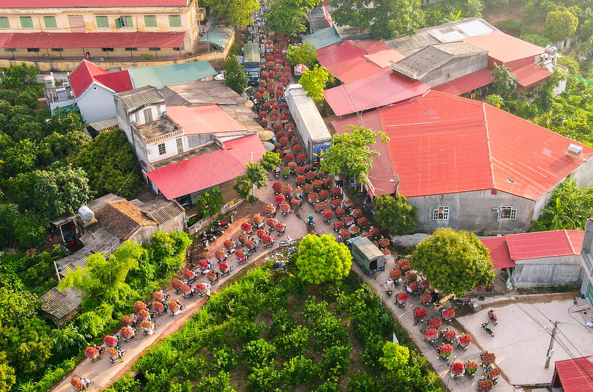 Bắc Giang: Xây khu đô thị, du lịch sinh thái của FLC