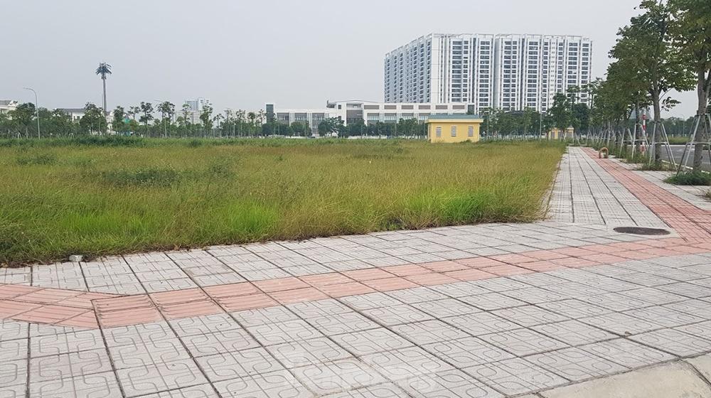 Quyết định đấu giá đất mới tại Hà Nội có gì nổi bật?