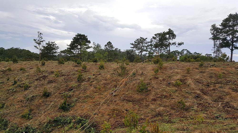 UBND thành phố Bảo Lộc ngăn chặn dự án ma