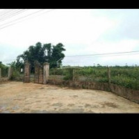 Chính Chủ Bán Nhanh đất Mặt Tiền đường Tặng Nhà Xã Bờ Ngoong Huyện Chư Sê Tỉnh Gia Lai