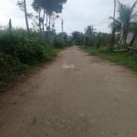 Chính chủ bán đất sào, đầu tư cực rẻ tại thôn Phước Thiện, xã Phước Sơn